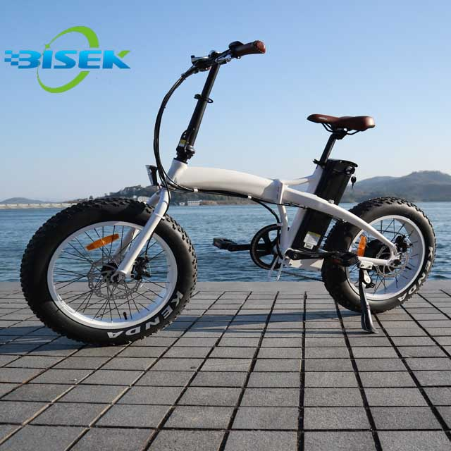 500W/750W <strong>Folding</strong>/Foldable 20X4 Fat Tyre Electric Bike/ Pedelec/E Bike/ Bicycle with CE