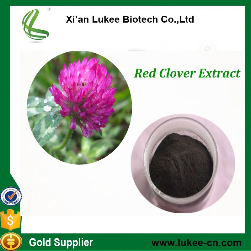 Free Sample Natural Isoflavones Organic Red Clover Extract