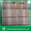 LVL plywood for wooden pallet, poplar LVL board for door frame