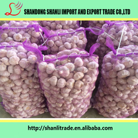 garlic exporters china, fresh red garlic, normal white garlic