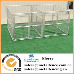 6'X8'galvanized steel tubing dog kennel with fight guard divider and 2 dog runs