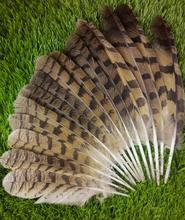 "New! sale high quality owl feathers, 10-14 ""/ 25-35cm, as shown in the picture Ordered length"