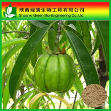 Weight-losing Function Garcinia Cambogia Extract HCA 50% 60% HPLC