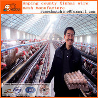 chicken farm equipment: traditional wire cages