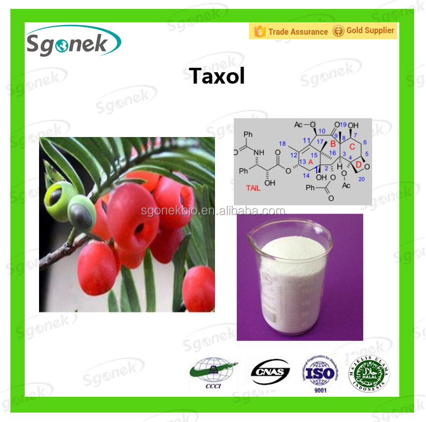 Anti-cancer function High Quality pure 99% Taxol/Abraxane/Docetaxel Manufacturer
