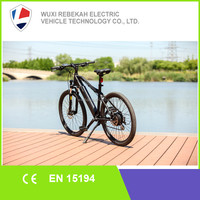 MADE IN CHINA MTB Ebike From