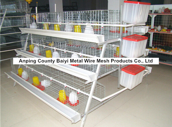 Metal Wire Chicken Cage For Farm