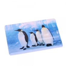 Credit Card usb flash drive stick with color printed usb memory stick Logo