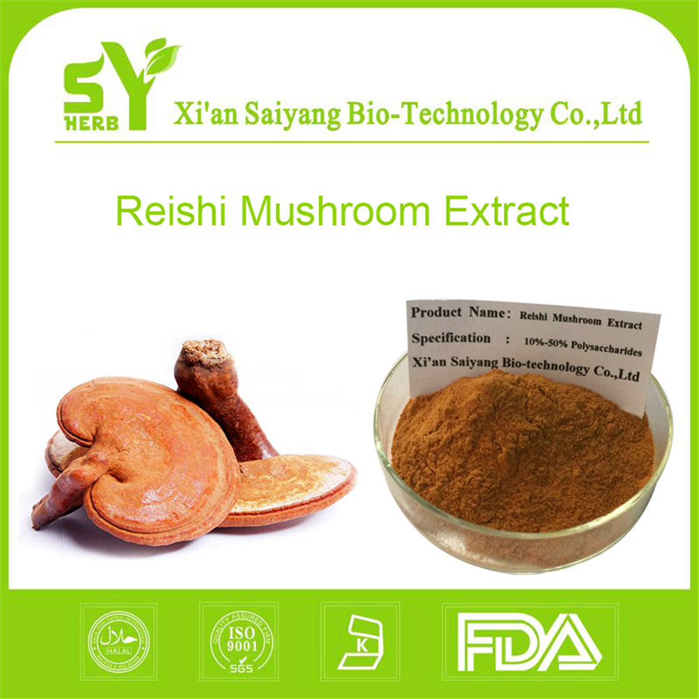 Natural Organic Reishi Mushroom Extract Powder