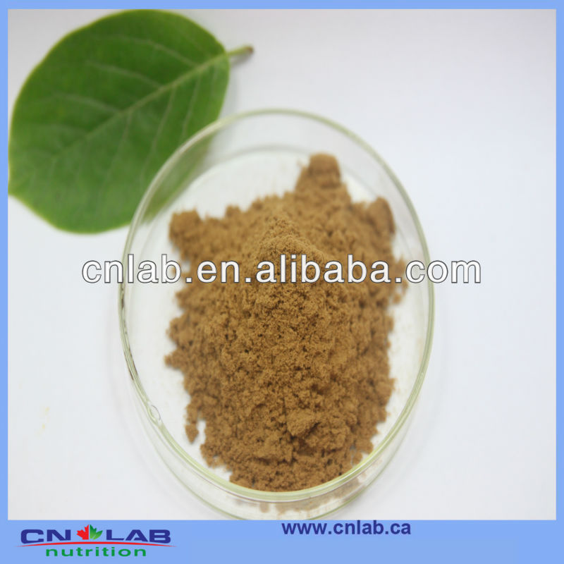 Supplier of 100% Natural Sea Buckthorn Berry Extract/Seabuckthorn Fruit Extract Powder