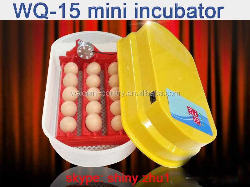 15 egg chicken egg incubator for sale in chennai WQ-15