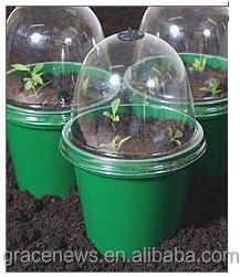 Solar Bell Cloches