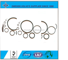 viton rubber o ring/oil seal. o rings