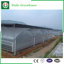 Poly tunnel greenhouse single span greenhouse tunnel greenhouse for sale
