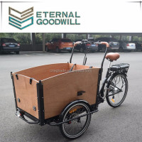 2017 Electric 3 Wheel Bicycle Cargo