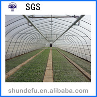 New Design Single Span Agriculture Greenhouse