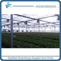 Polycarbonate Sheet Venlo Greenhouse