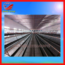 Multi-tier Layer Used Chicken Cages For Sale (0086-13721419972)