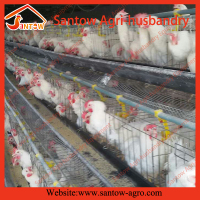 Poultry Husbandry Equipment wire animal cage for broiler chicken