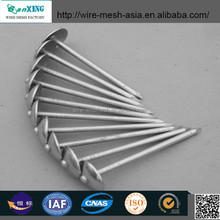 High Quality Galvanized Umbrella Head Roofing Nails China Factory