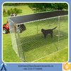 large dog cages