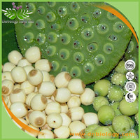 High quality Water-soluble Lotus Seed Powder/Lotus Seed Extract 4:1- 20:1 Lotus Seed Extract Powder