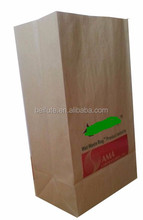 Large brown biodegradable paper bag for grocery