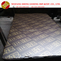USD13/sheet FOB price with good quality brown film faced plywood from Linyi factory ! Hot selling to UAE\QATAR\IRAQ