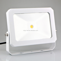 AC110-240V IPAD STYLE 10W led flood light COB IP65 1000lm 50-60Hz with best price best quality
