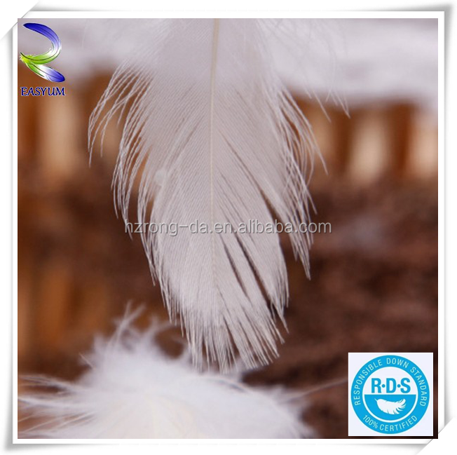 High Quantity Feather Trim Headdress Washed White Duck Feather