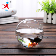 clear round glass fish tank