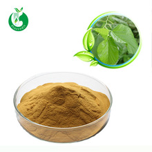 Top Grade Natural Mulberry Leaf Extract 1%&5% NDJ Powder