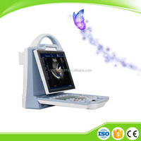 "Affordable portable 15"" display colorful ultrasound for musculoskeletal test"