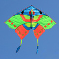 Colorful butterfly chinese kites for sale