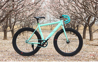 New Design 700C Fixie Bike /70mm Fixed Gear Road Bicycle