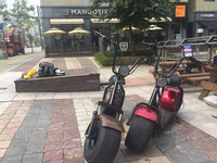 80km range 1000w big tire off road magee citycoco Good quality and cheap price high speed top level 2000W scooterstroke motor