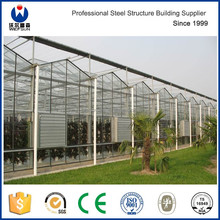 Good quantity low cost Steel structure Flower greenhouse manufacturers agricultural green house