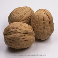 Walnut Oil (Cold Press)