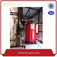 Fuel Gas/Diesel Steam Boiler for Alcohol Distillation Steam Capacity 300kg/hr