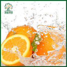 Exotic chinese citrus fruit orange