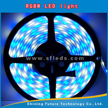 newest design SMD5050 60leds/m RGB+ White flex led strip 5050 led strip 300 leds rgb party decorations