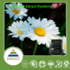 Manufacturer Pyrethrum extract 25%-50% oil Pyrethrins Hot Selling