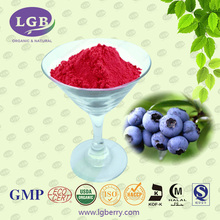 High quality natural blueberry juice powder/ supply kinds fruit juice powder