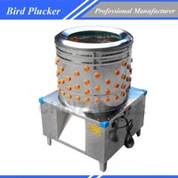 High efficiently quail / birds plucking machine with 201 stainless steel CHZ-N45