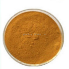 Herbal Powder Organic Ginger Root Extract