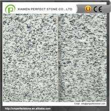 Cheapest Chinese 24 x 24 Granite Tile