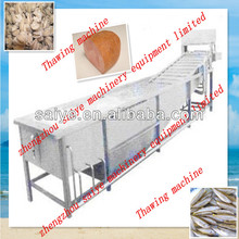 Frozen meat/fish thawing machine