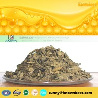 Pure Extract Powder Brazilian Green Propolis / wax green propolis