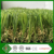 2016 Best Sale Best Standing Ability Ornamental Grasses Lawn For Small Gardens