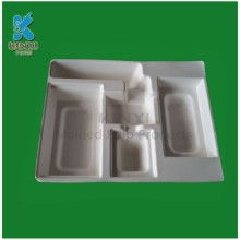 Customized Pulp Molded Insert Trays Packaging Design Firms in China